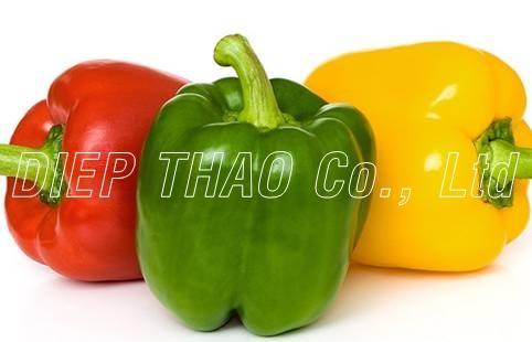 Bell pepper - Capsicum