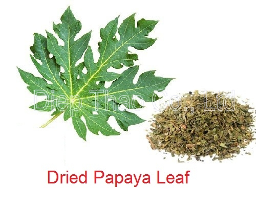 Dried Papaya leaf